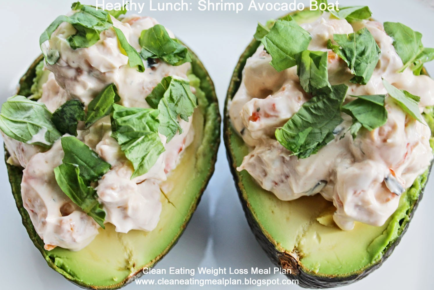 18 CLEAN EATING DIET RECIPES FOR AVOCADO LOVERS
